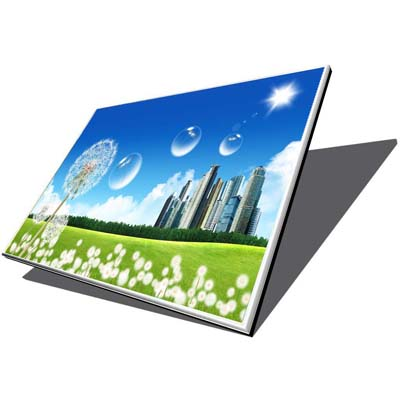 "15.4"" LCD Panel 1280*800 30 Pins (universal) Dead Pixel"